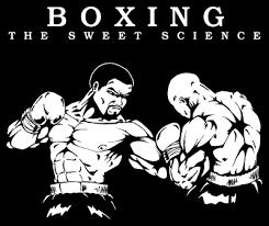 بوكسينج او الملاكمة
