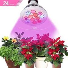 special offers cheap led grow light elefox best full spectrum