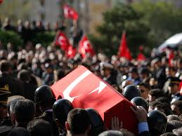 www.aybilgi.net türkiye ve kktc de protesto eylemi