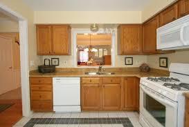 Best Kitchen Designs In The World by Best Kitchens In The World With 2013 Styles Designs Ideas And Decors
