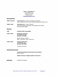 Basic Resume Examples Skills Example Of A Basic Resume Example Resume And Resume Objective