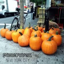 halloween city middletown ny about u2014 maniac pumpkin carvers