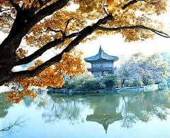 الجمال كوريا