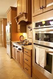 carlton raised panel cabinet door style