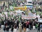 """Brescia grande Festa per il """"Natale"""" del profeta Mohammad [FOTO ... bladibella.com"""