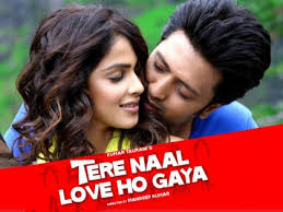 Tere Naal Love Ho Gaya (2012) – Hindi Movie PDVD