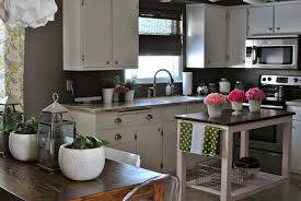 Dark Grey Cabinets Kitchen 100 Dynasty Kitchen Cabinets Kitchen Rta Cabinet Reviews