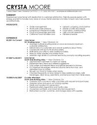 Example Server Resume by Example Server Resume Resume For Your Job Application