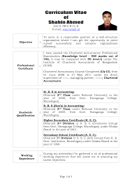 resume writing for experienced professional resume writing software 25 best ideas about template of resume writing for it professionals large size resume writing professionals