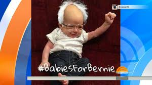 babiesforbernie inspires cutest baby halloween costumes nbc chicago