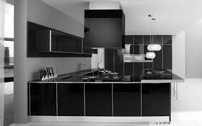 modern black kitchen cabinets
