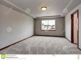 empty basement room with white walls carpet floor and one window