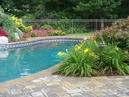 some low debris plants for around pool landscaping around patio