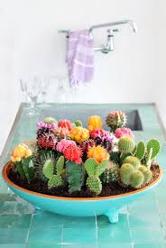 Succulents Pots For Sale by 21 Creative Succulent Container Gardens To Diy Or Buy Now