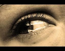 فشل إنسانية الإنسان في الوقت الردئ..! Images?q=tbn:ANd9GcRZ4SpKmkii4riZCvCreyfy0vC95nbrnft8q3RuBU_D6g4_yxc02l9LvOJr