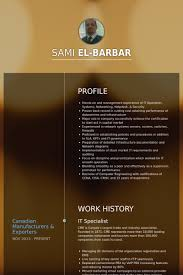 Inventory Specialist Resume Sample by It Specialist Resume Samples Visualcv Resume Samples Database