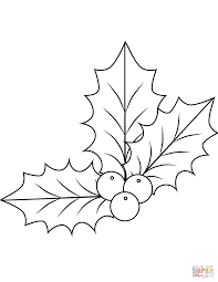 christmas holly berries coloring page free printable coloring pages