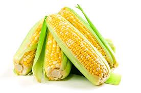 Кукуруза – польза и вред