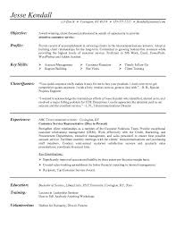 Professional Profile And Relevant Skills Resume Examples  Template Of Resume With Objective As Attentive Customer Service And Key Skills In