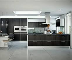 kitchen best home kitchen cabinets sears kitchen cabinets