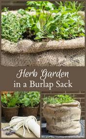 1118 best diy herb garden images on pinterest garden ideas