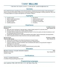 Best It Resume Sample by Unforgettable Web Developer Resume Examples To Stand Out