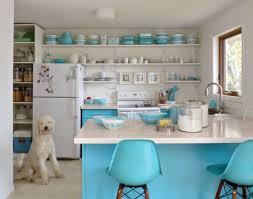 Shelf Kitchen Cabinet Kitchen Room Fdcadcececcaa Ikea Kitchen Shelves Diy Kitchen