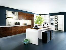 Kitchen Design Tips by Unique Best Kitchen Designer Design App With Home Interior Ideas