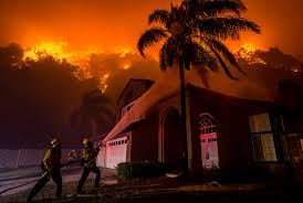 Willow Wildfire California by Orange County U0027s Canyon Fire Explodes To 2 000 Acres