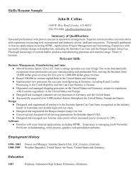 Executive Summary Resume Example Template Resume Skills Summary Sample Free Resume Example And Writing