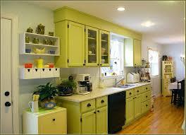 Design Line Kitchens Kitchen Design 20 Amazing Light Green Kitchen Cabinets Storage