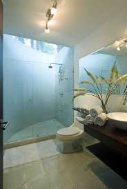 Small Master Bathroom Design Ideas Colors 73 Best Bathrooms I Wouldn U0027t Cleaning Images On Pinterest