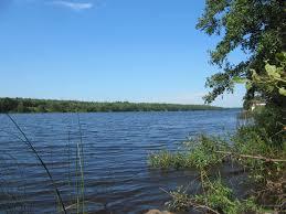 Mologa River