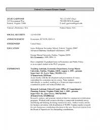 Resume Samples For Jobs In Usa by Examples Of Resumes Resume Samples For It Jobs Format Teacher