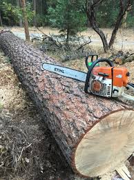 the chainsaw thread archive page 3 teton gravity research