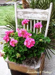 Shabby Chic Planters by Better Housekeeper Blog All Things Cleaning Gardening Cooking