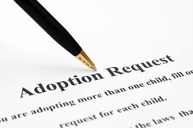 siblings hoping to be adopted together get big response after posting plea online