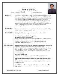 Best Resume Examples Professional by Professionally Written Resume Sample