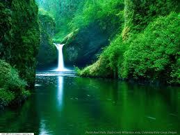 مناظر ساحرة للطبيعة images?q=tbn:ANd9GcRdkrJicg_FtZRBTRUtI-A3vyHbSkpyM_ViuJb55crmbrQtNEmV