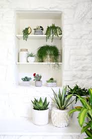 are you faux real how to find the most convincing faux plants