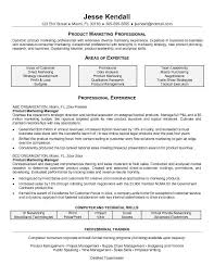 Research Analyst Sample Resume by Marketing Resume Sample Top 8 Digital Marketing Executive Resume