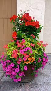 2053 best container gardening images on pinterest gardening