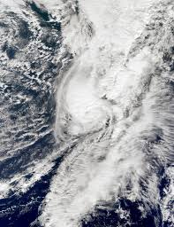 Hurricane Shary