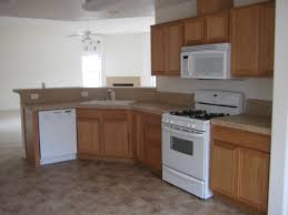 Home Depot Kitchen Cabinets In Stock by Download Cheap Kitchen Cabinet Doors Gen4congress Com