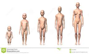 nude photos of female stages of puberty|enf-pictures-006
