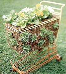 container gardening ideas shopping cart used as a salad planter