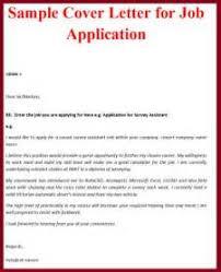 IT Job Application Cover Letter aploon Carpinteria Rural Friedrich