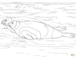 harp coloring page ribbon seals coloring page free printable coloring pages