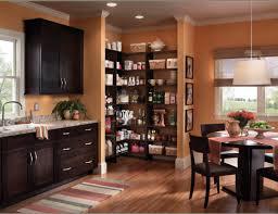 Beextraordinary Glass Kitchen Cabinet Doors Tags  Kitchen Cabinet - Kitchen cabinet with glass doors