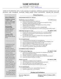 Director Of It Resume Examples by Inventory Control Manager And Logistics Resume Example